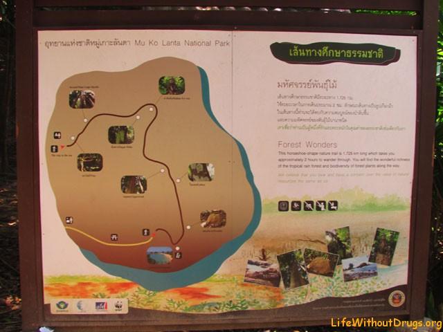Схема трекинга в национальном парке - остров Ко Ланта