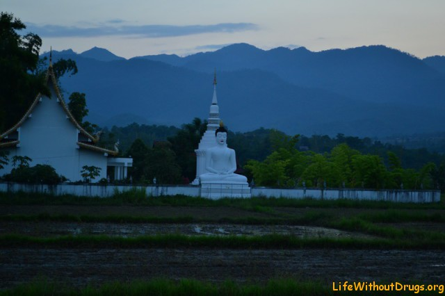 Будда из Убуда - храм в Пае