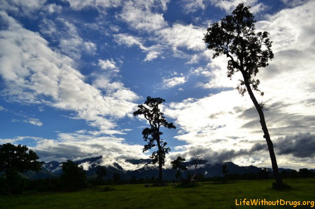 Праздник 21 июня - летнее солнцестояние в Пае.