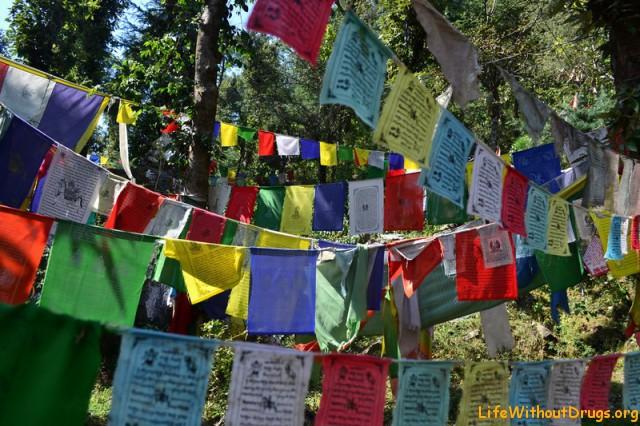Свободу Тибету! Долгой жизни Далай Ламе!