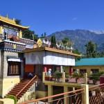 Нечунг монастырь в Дхарамсале и государственный тибетский оракул