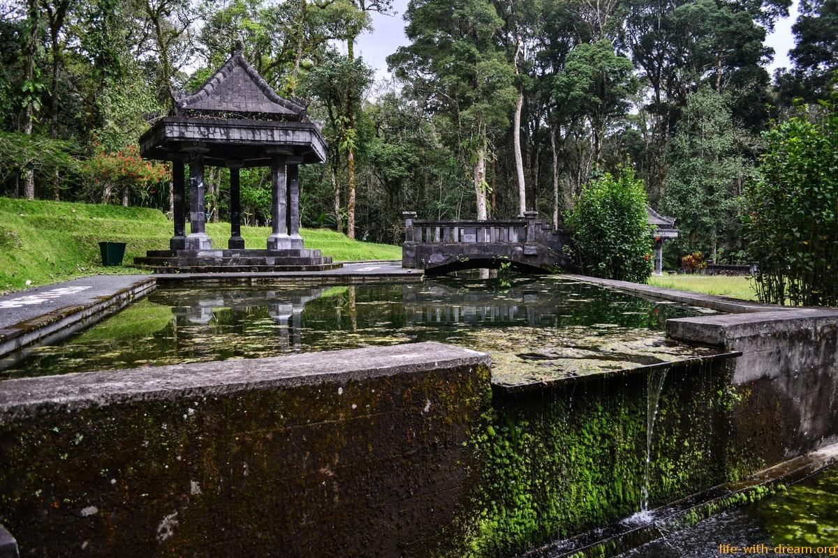 Ботанический сад в Бедугуле - волшебный лес, где живут эльфы и гномы.