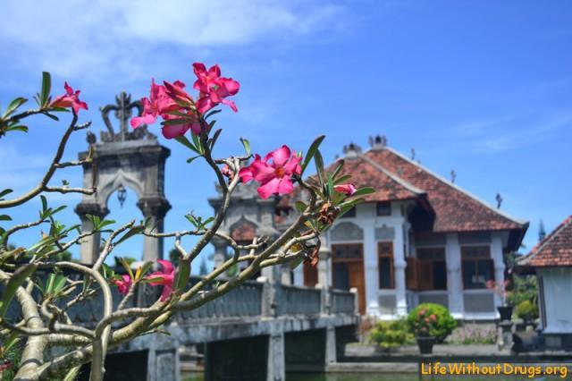 Достопримечательности Бали фото
