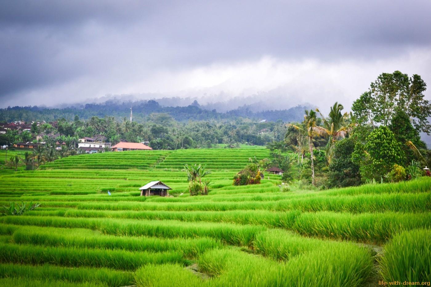 Сакральные пространства и места силы на острове Бали. Наш топ-10.