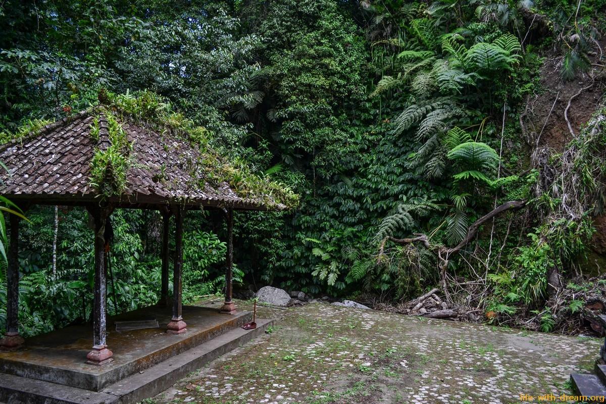 Самые красивые рисовые террасы Jаti Luwih и храм у подножия горы Батукару