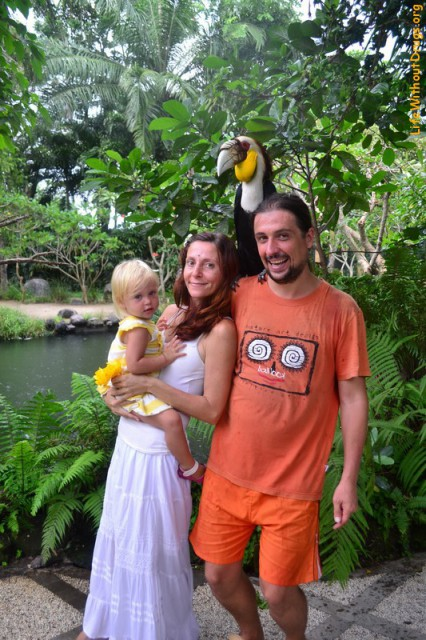 Парк птиц на Бали. Свободу попугаям!
