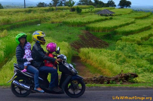 Мотобайк - любимый транспорт балийцев