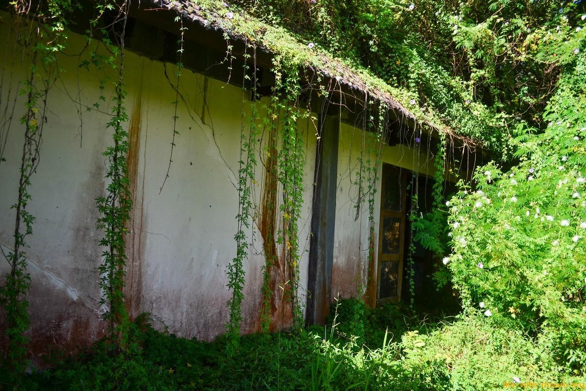 Заброшенный отель на Бали за сто миллионов долларов