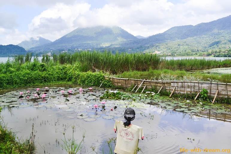 Святые озера острова Бали - Братан, Буян и Тамблинган.