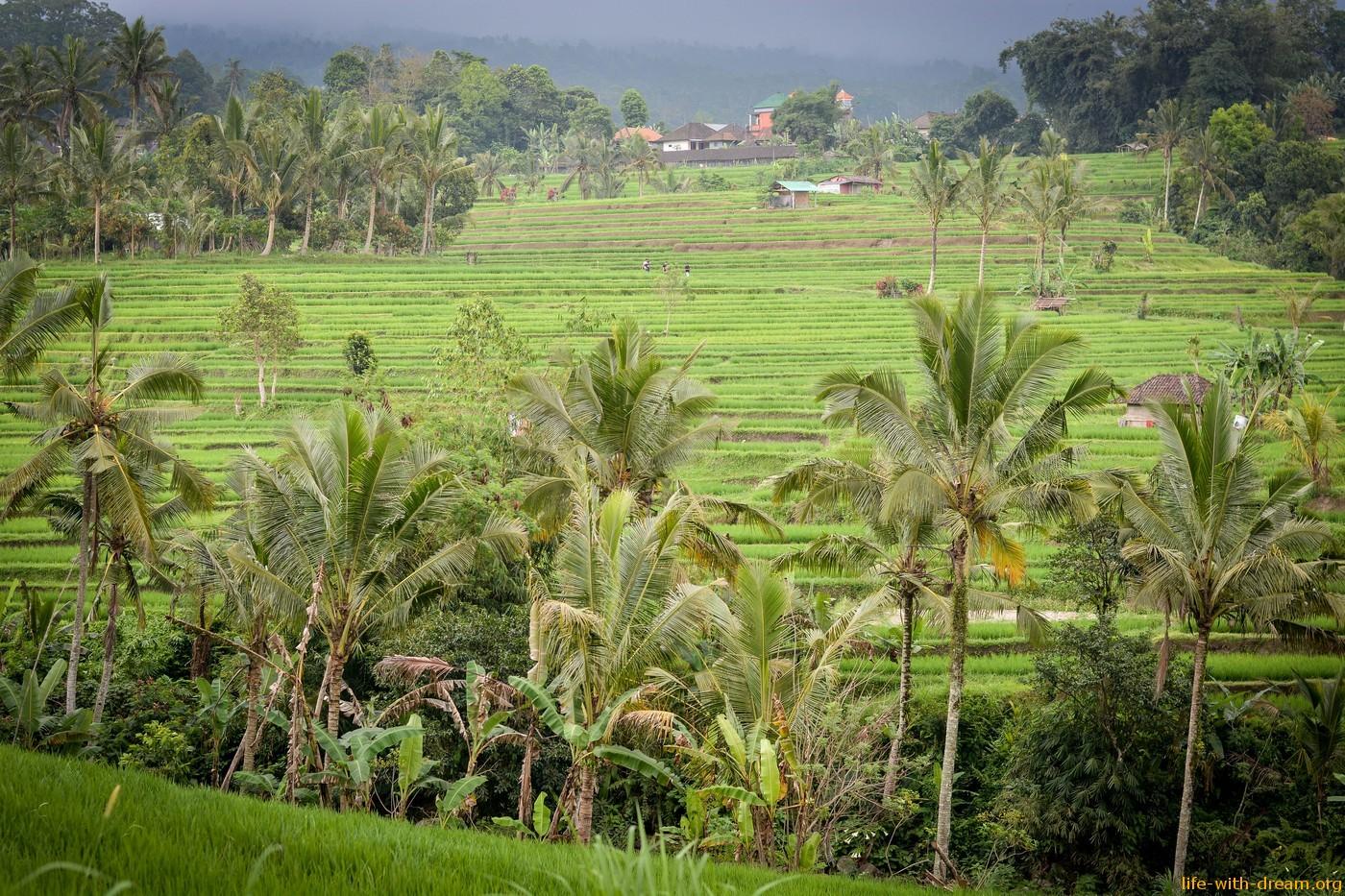 Достопримечательности Бали. Топ-10 наших любимых мест на острове.