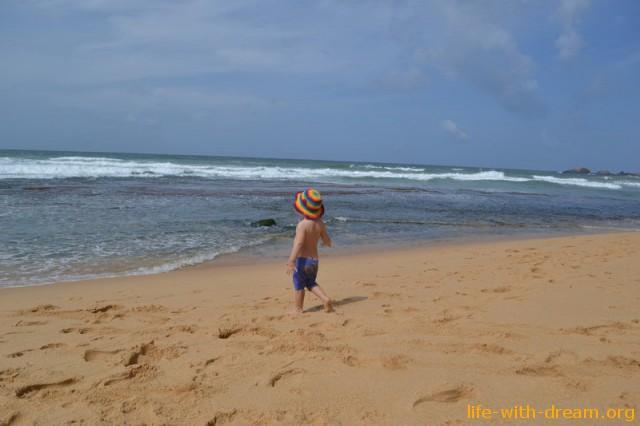 Мы в Шри-Ланке