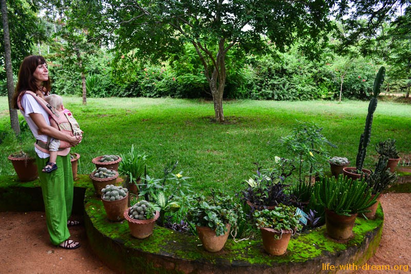 Ауровиль - город сад