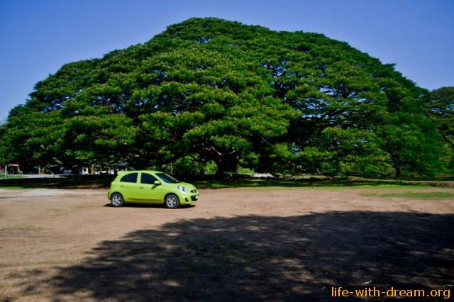 puteshestvie-na-avto-thailand-0693