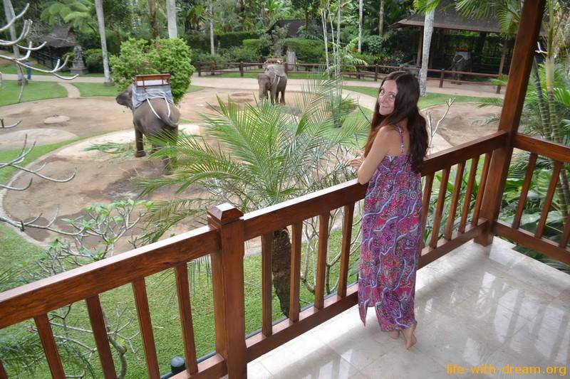 Elephant Safari Park&Lodge - экзотический отель на Бали
