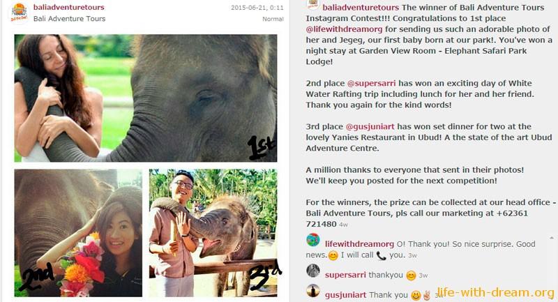 elephant-safari-park-lodge-555