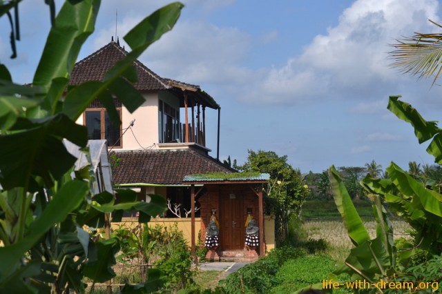 Наш дом на Бали в рисовых полях Убуда