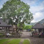 Традиционная деревня Тенганан – пристанище народности Бали-Ага.