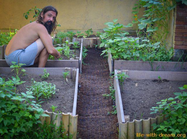 Мы, садоводы-любители