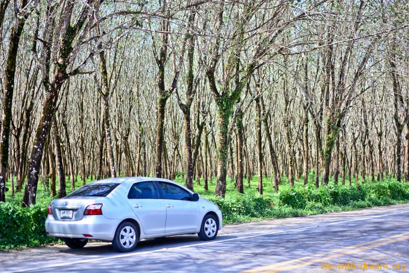 Аренда авто на Пхукете, наш опыт.