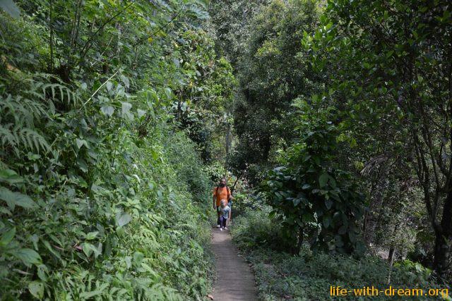 Прогулка по окрестностям водопада Лемуки-Секумпул. Фотозарисовка.