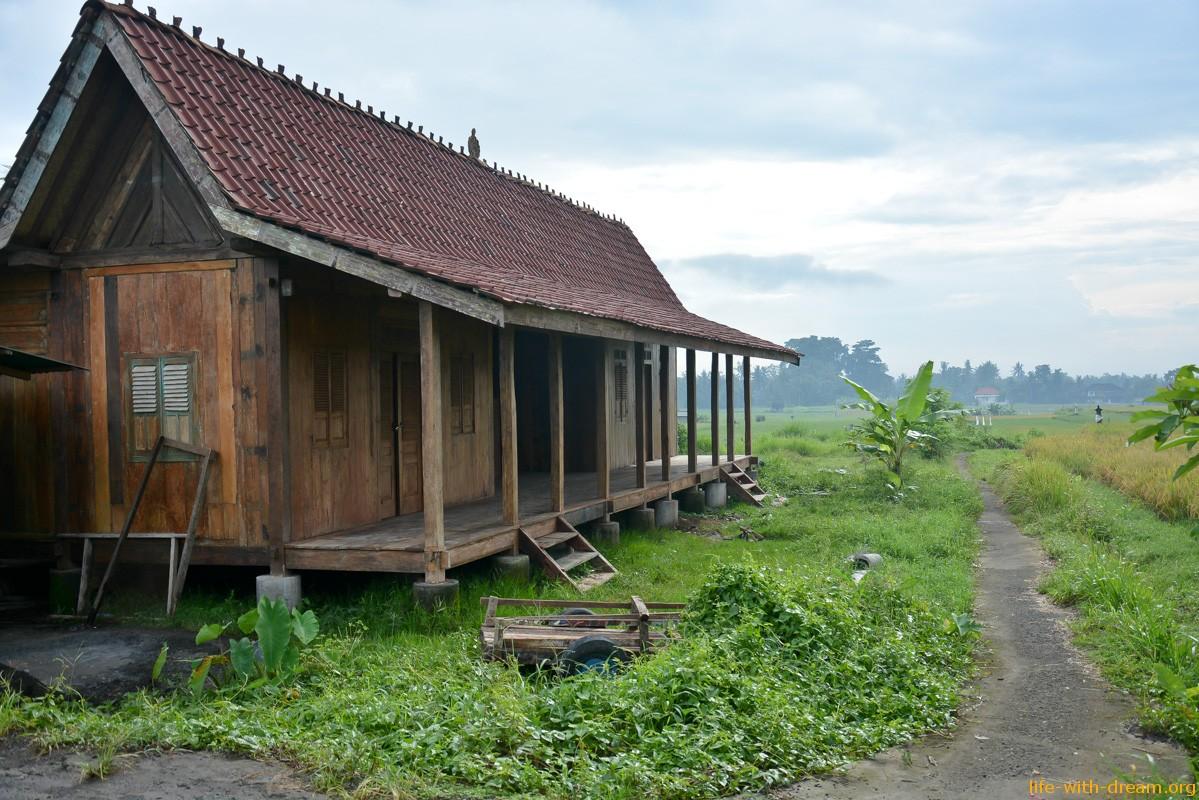 Создаем русскую деревню на Бали. Ищем единомышленников. Присоединяйтесь!