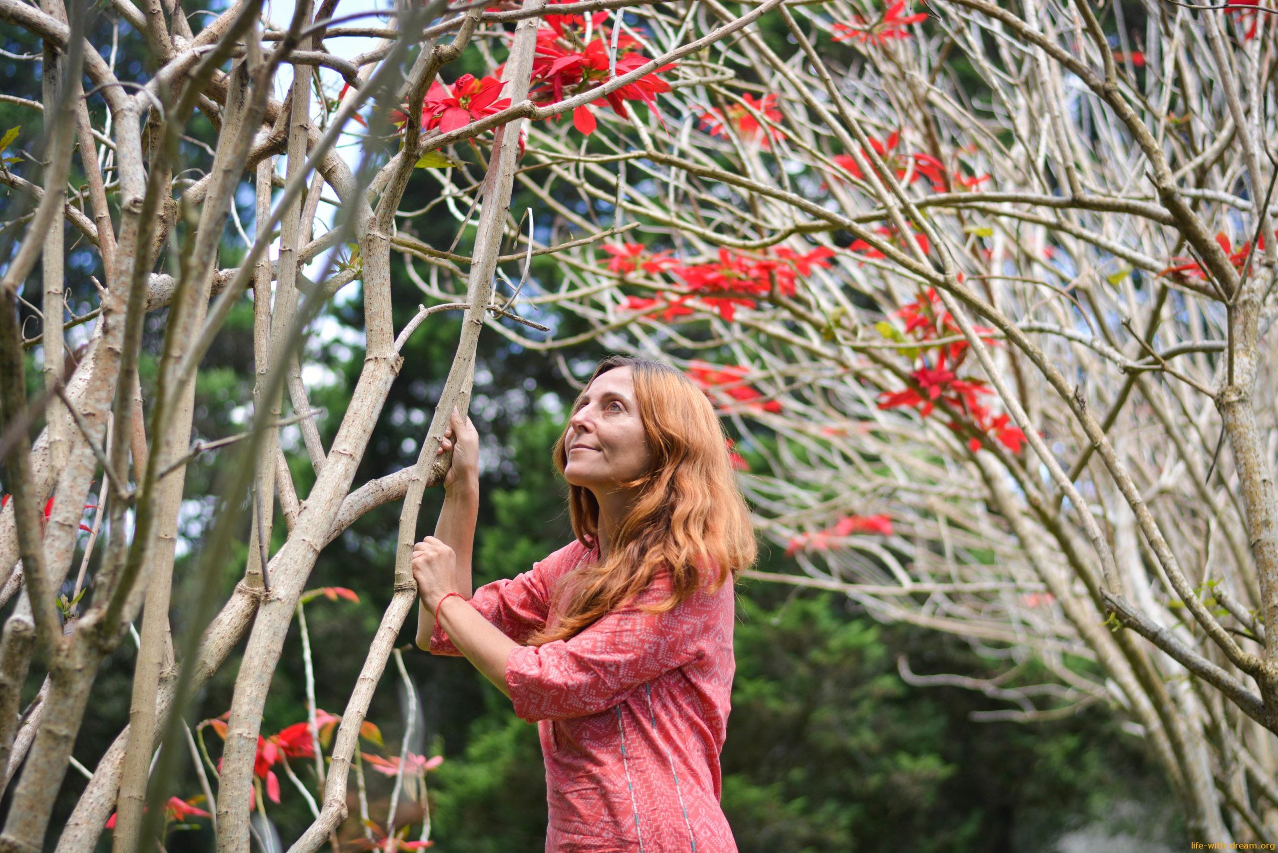 60 дней волшебства и вдохновения с Наталией Любимовой